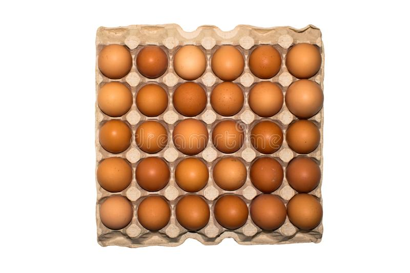 Eggs are broiler eggs. Background of chicken eggs royalty free stock images