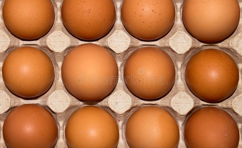 Eggs are broiler eggs. Background of chicken eggs royalty free stock photography
