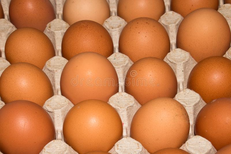 Eggs are broiler eggs. Background of chicken eggs stock photography