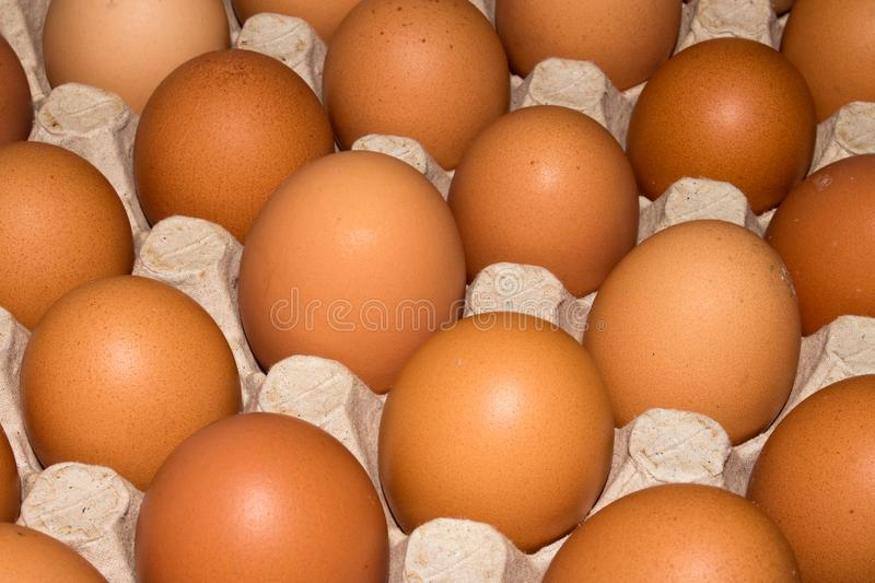 Eggs are broiler eggs. Background of chicken eggs stock images