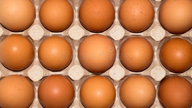 Eggs are broiler eggs. Background of chicken eggs royalty free stock image