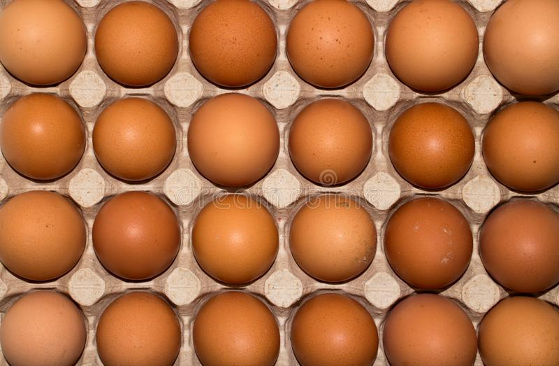 Eggs are broiler eggs. Background of chicken eggs royalty free stock photos