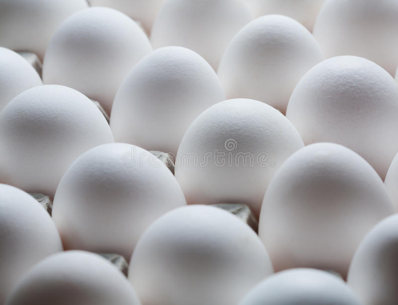 Download Eggs In Cardboard Container Stock Photo - Image: 25866238