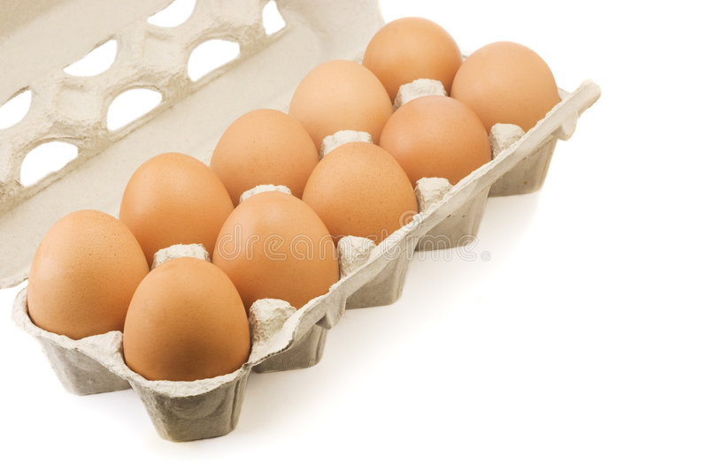 Download Eggs in carton isolated stock photo. Image of background - 6443898