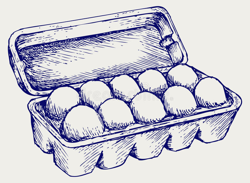 Eggs in a carton package royalty free illustration