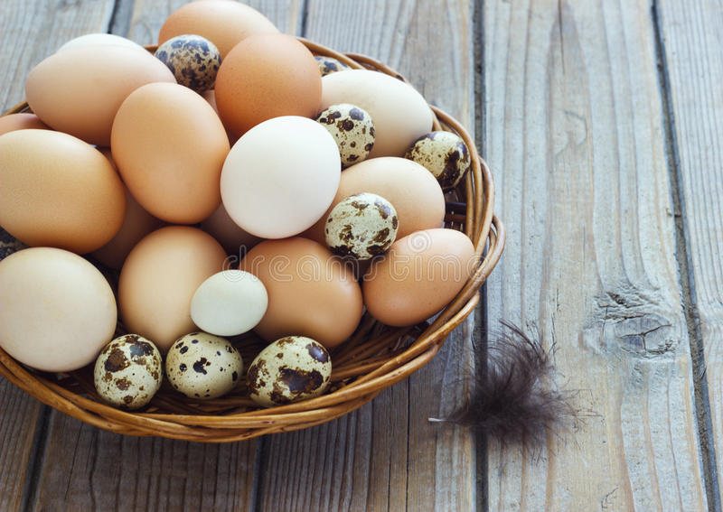 Eggs from chicken and quail farm in a wicker basket royalty free stock images