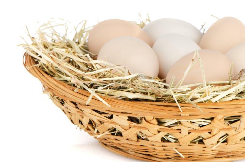 Eggs closeup royalty free stock photos