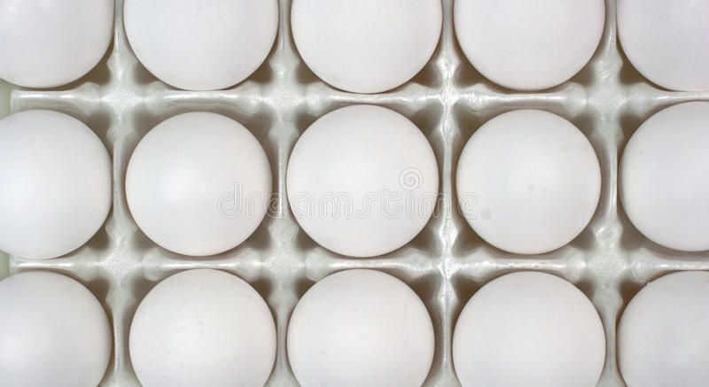 Eggs in Crate