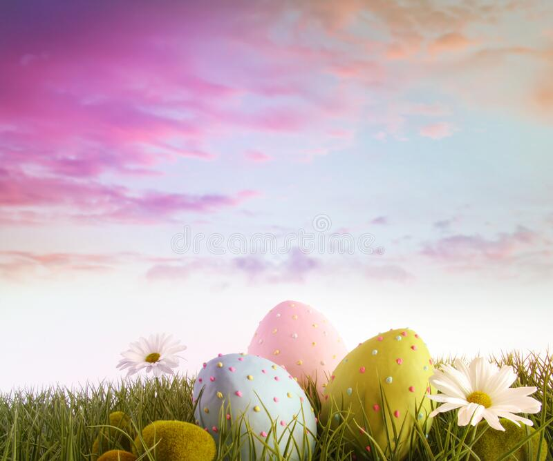 Eggs with daisies in grass with rainbow color sky royalty free stock image