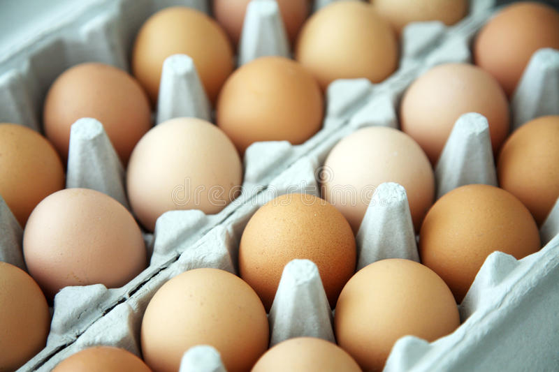 Eggs in an egg box royalty free stock photo