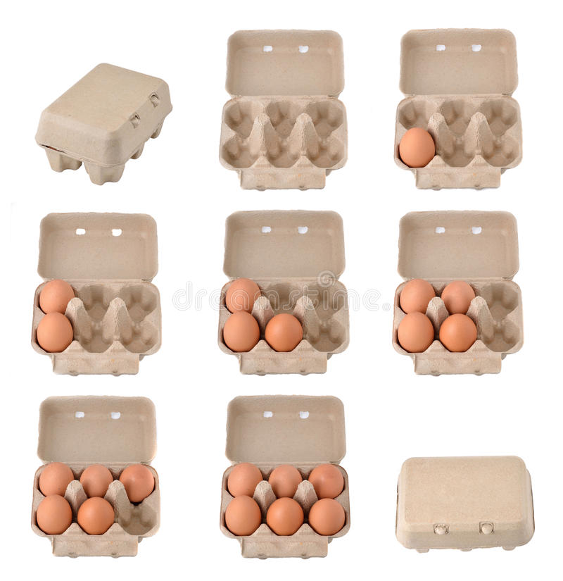 Eggs in an egg carton stock photos