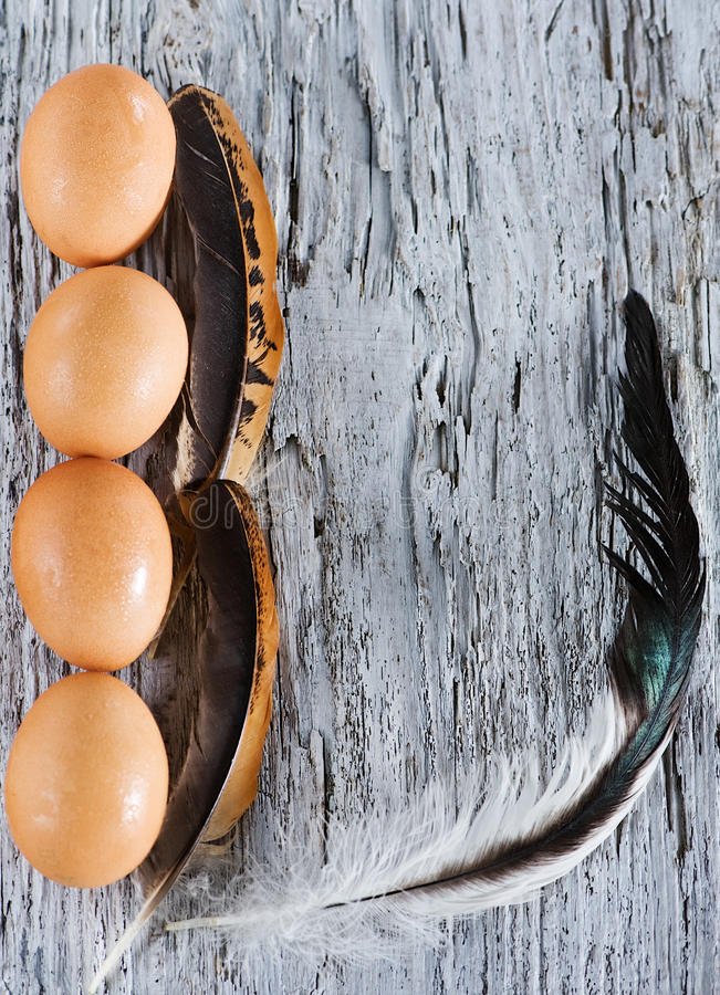 Download Eggs And Feather On The Old Wood Stock Photo - Image: 26329744