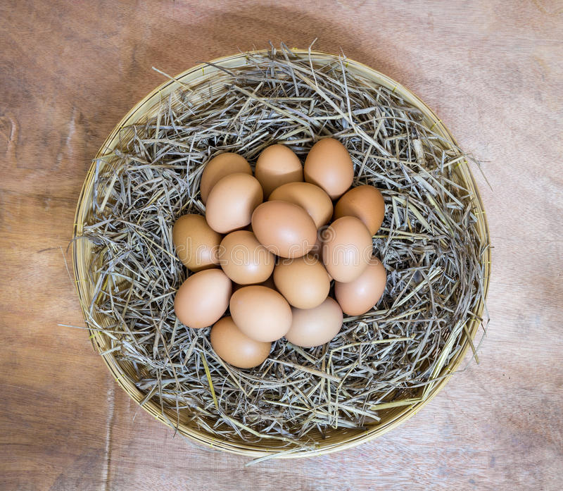 Eggs group. In basket thatch royalty free stock photos