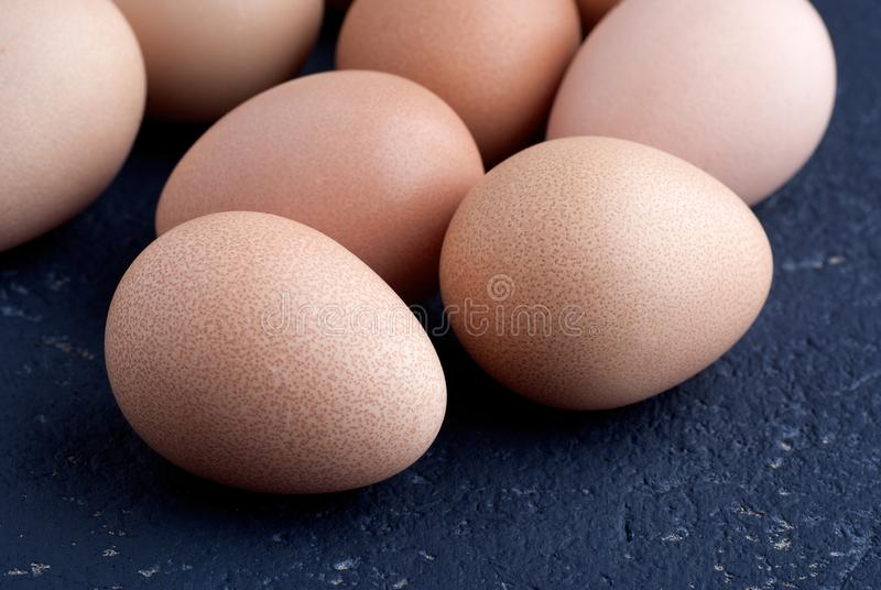 Eggs of guinea fowl on blue background stock images