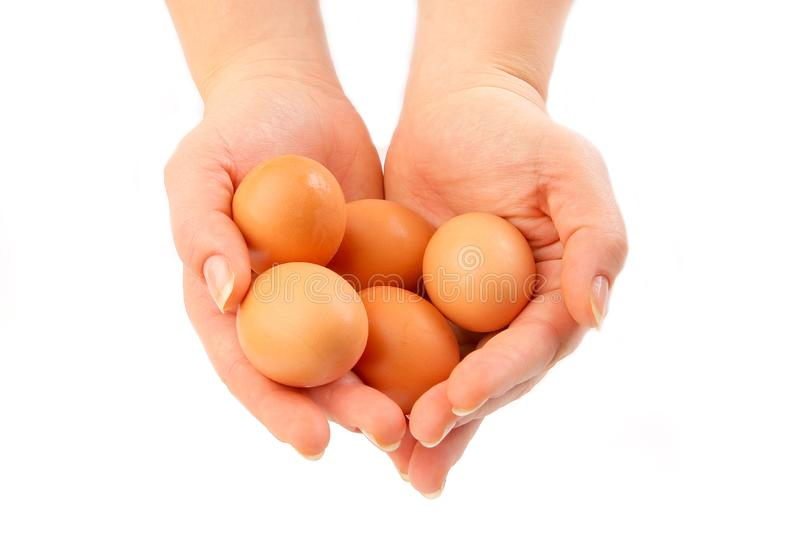 Eggs in hands royalty free stock photos