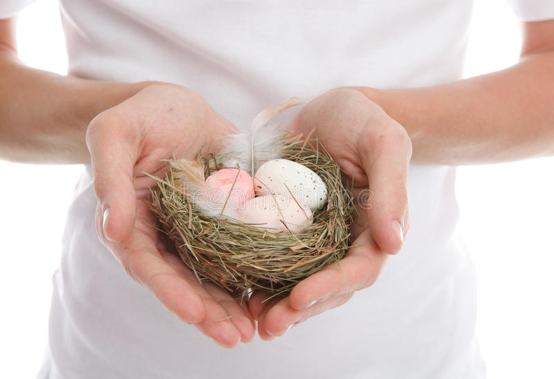 Eggs in heart cupped hands stock images