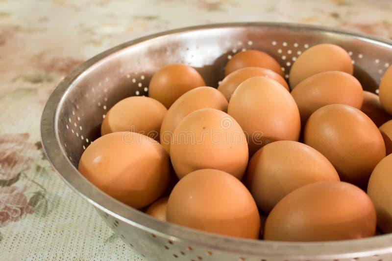 Eggs il vaso fotografie stock