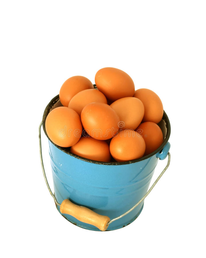 Free Eggs In Blue Old Metal Bucket Isolated On White Stock Images - 22446464