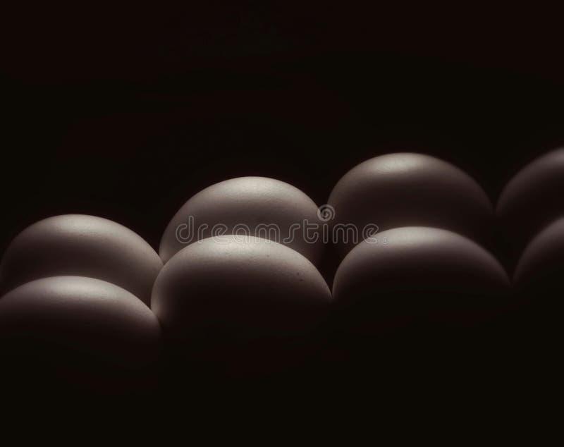 Eggs le résumé discret images stock