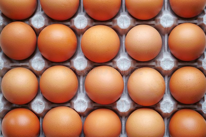 Eggs lie in a paper tray, brown color, top view.  royalty free stock photography