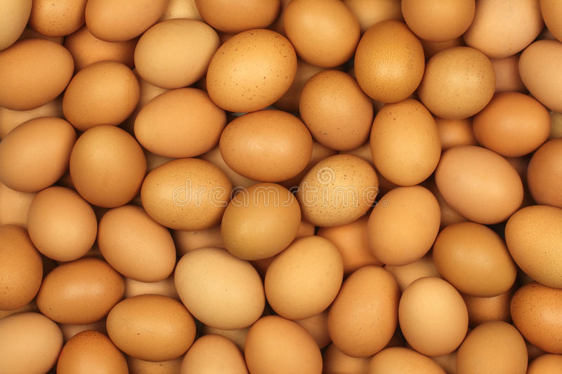 Download Eggs stock photo. Image of many, fresh, background, chicken - 31336892