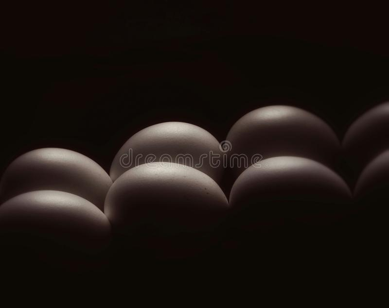 Eggs low key abstract stock images