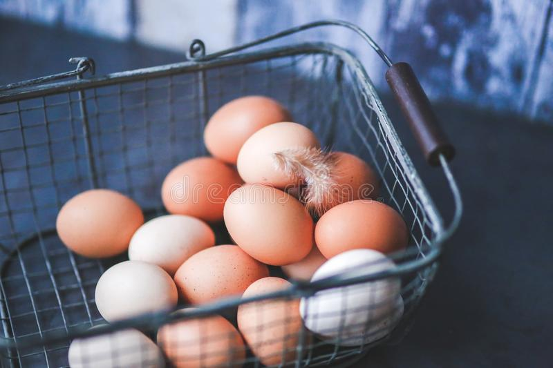 Eggs in the Metal Basket royalty free stock photos