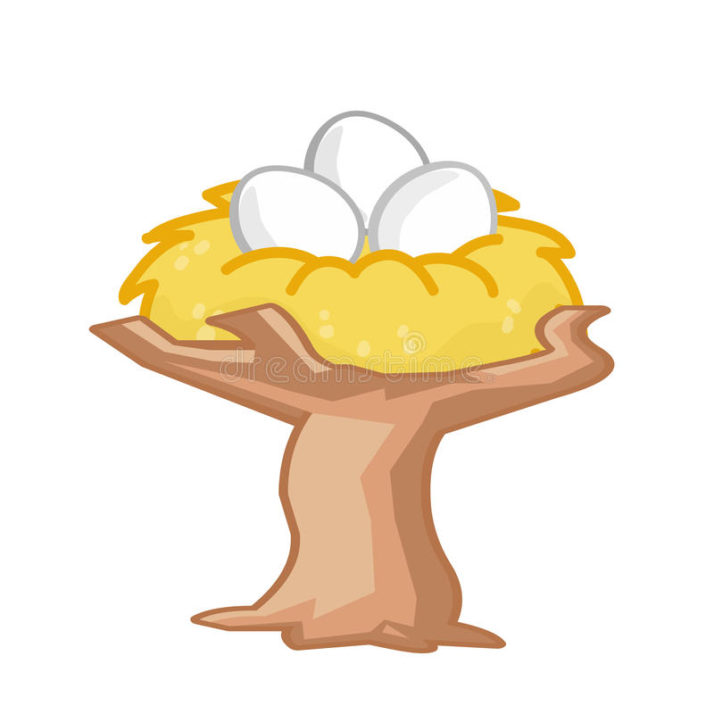 eggs in a nest on the tree stock illustration image of