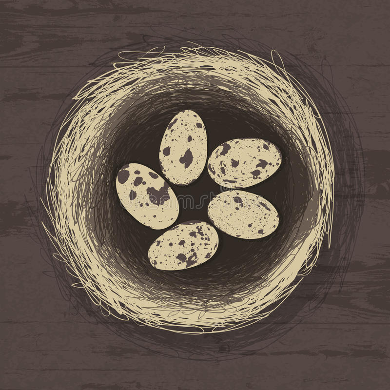 Download Eggs In Nest On Wooden Texture. Stock Illustration - Image: 25404752