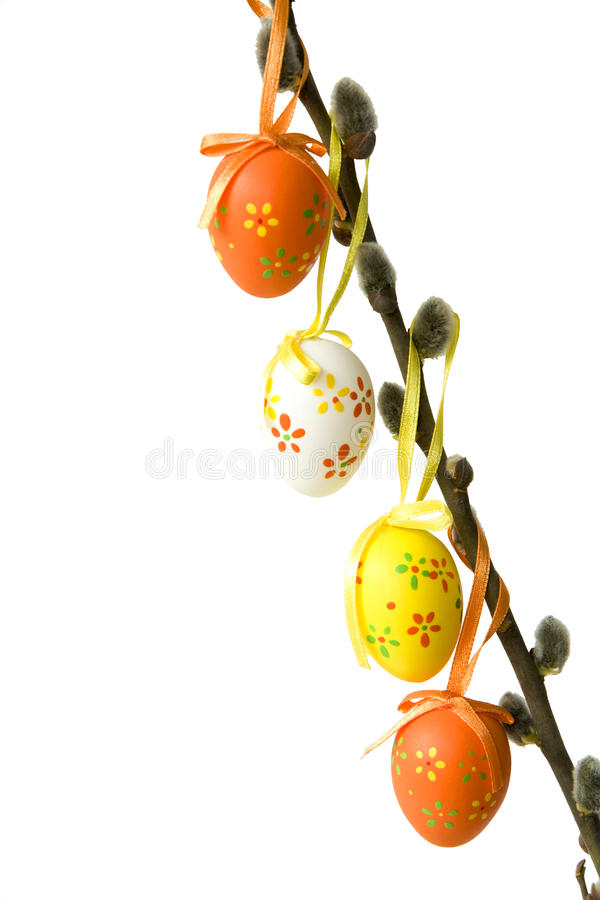 Free Eggs On A Willow Stock Photo - 13628490