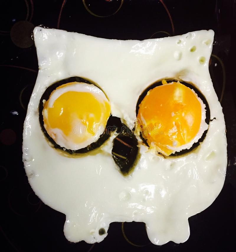 Eggs owl. Fried eggs breakfast in form of an owl stock image