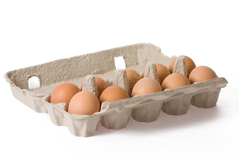 Eggs in paper egg carton stock image