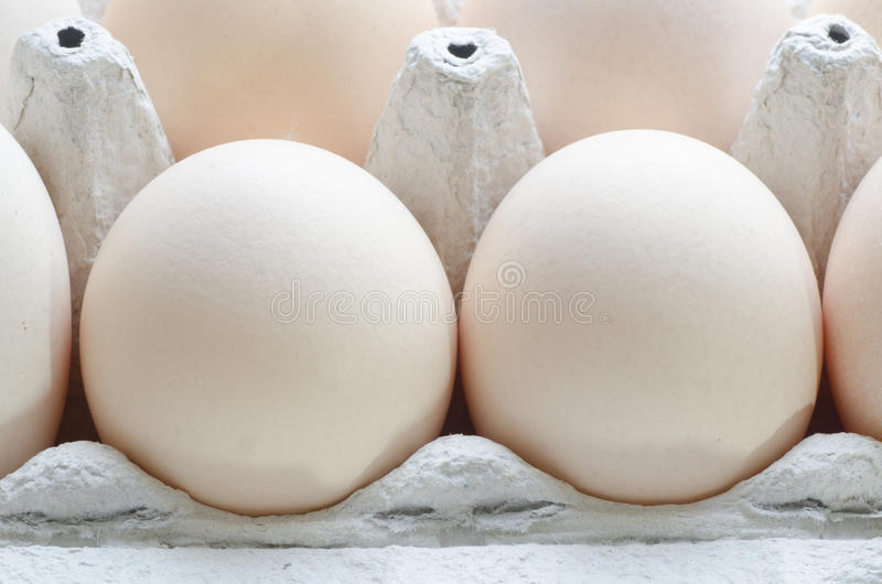 Eggs in paper egg carton stock photo