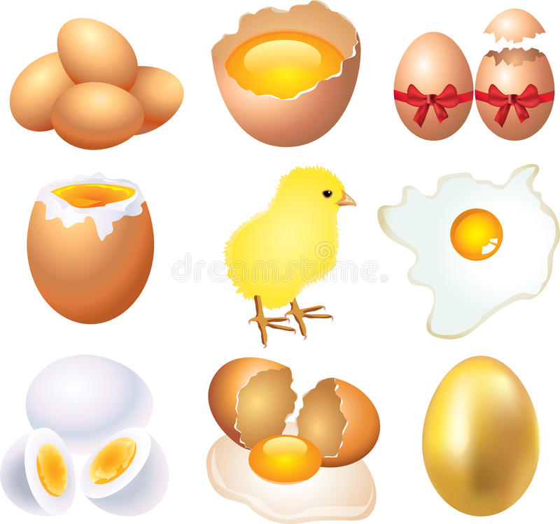 Eggs photo-realistic set. Eggs photo-realistic detailed set royalty free illustration