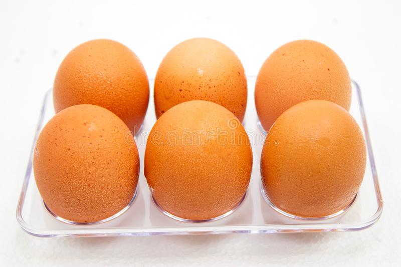 Eggs in plastic box on the white background. Droplets of water on eggs. Natural, nature, eat, material, animal, chicken, uncooked, macro, shell, oval, farm royalty free stock image
