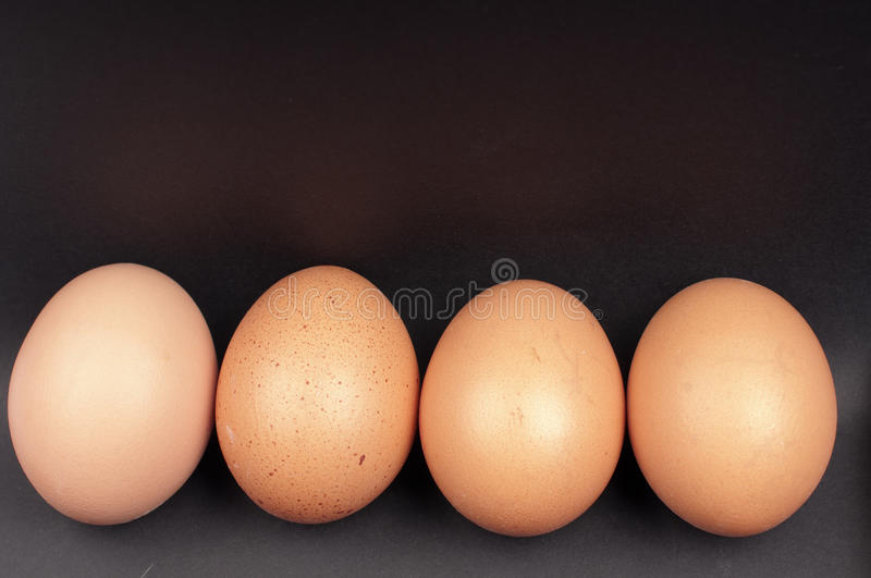 Download Eggs in a row stock photo. Image of brown, studio, nature - 28676870