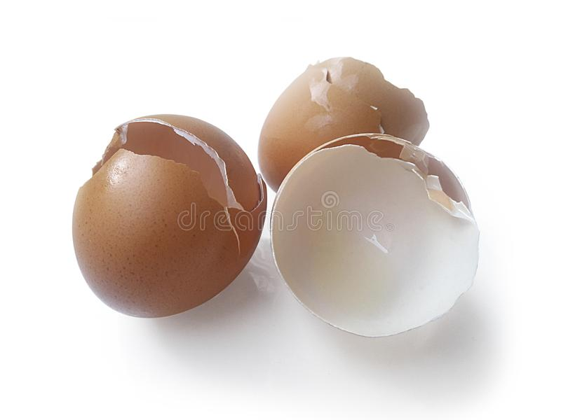 Eggs shell on a white background stock image