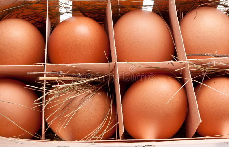 Download Eggs with a straw stock image. Image of nutritious, lunch - 23960415