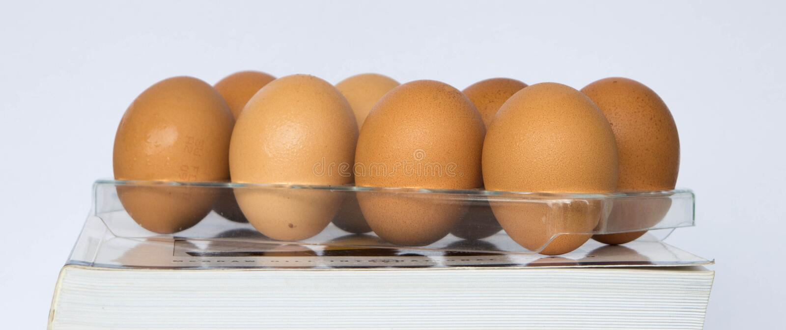 Eggs in tray. Chicken eggs in plastic tray royalty free stock photos