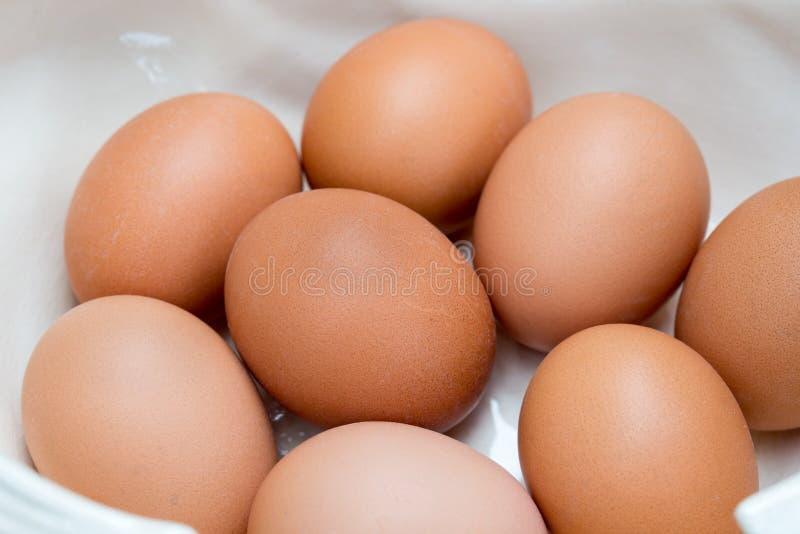 Eggs in white  ceramic bowl macro. Group of eggs in white  ceramic bowl macro royalty free stock photography