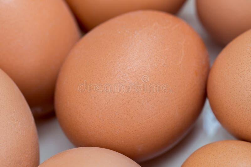 Eggs in white  ceramic bowl macro. Group of eggs in white  ceramic bowl macro royalty free stock photo