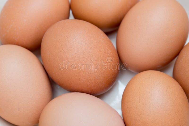 Eggs in white  ceramic bowl macro. Group of eggs in white  ceramic bowl macro stock images