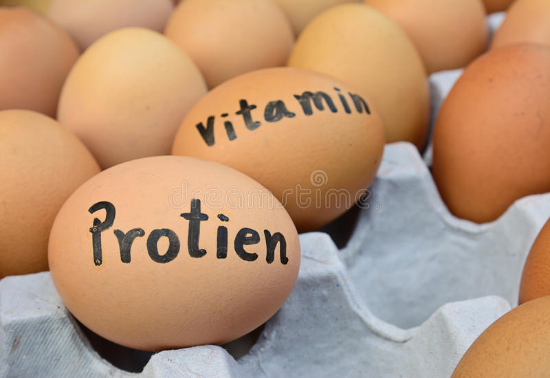 Eggs with word protien,vitamin for food concept. Closeup of eggs with handwriting word protien,vitamin on egg crate for food concept ; selective focus with blur royalty free stock image