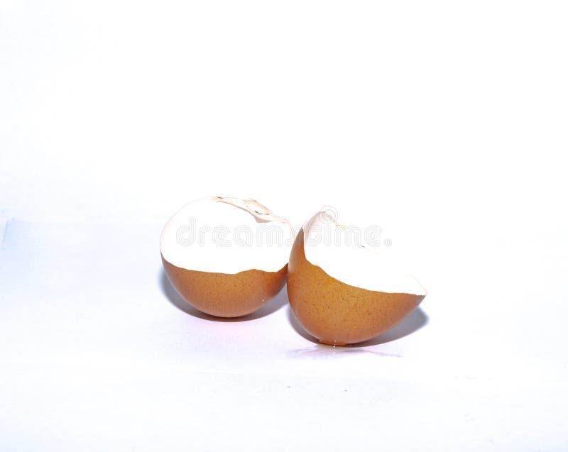 Eggshell aislado en el fondo blanco foto de archivo libre de regalías