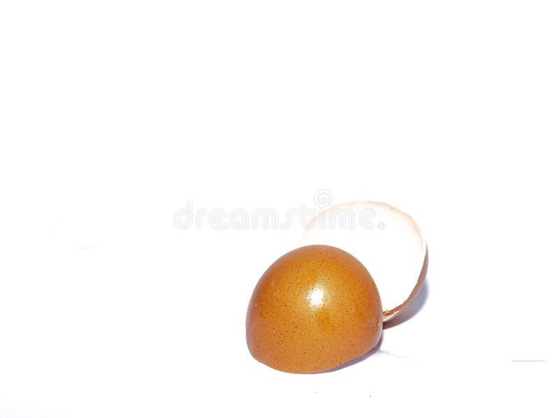 Eggshell aislado en el fondo blanco imágenes de archivo libres de regalías