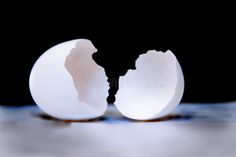 Eggshell cracked in half royalty free stock image