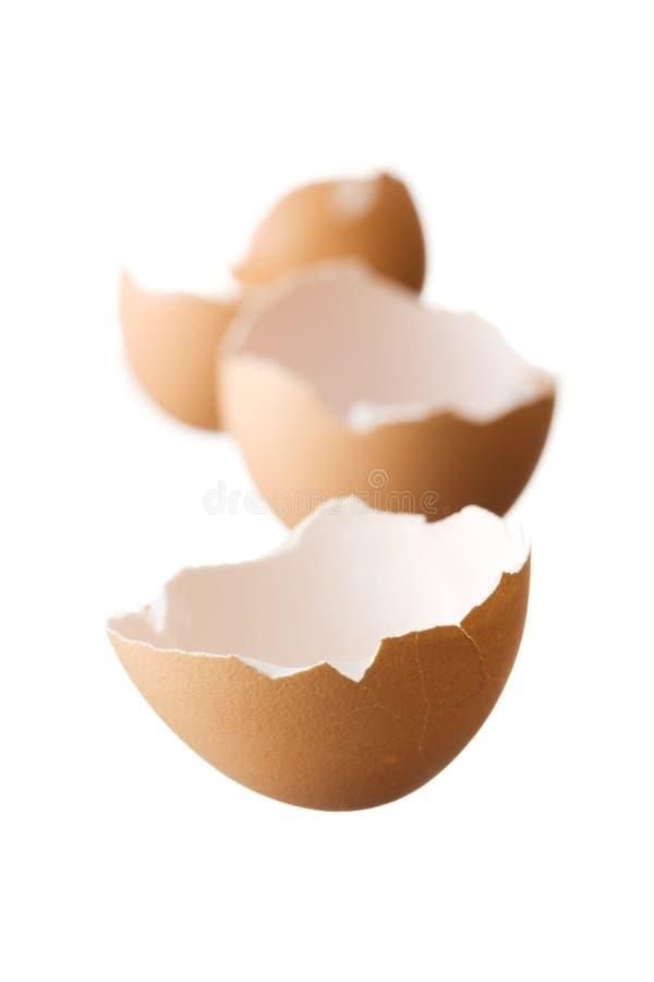 Eggshell isolated on white background royalty free stock photo