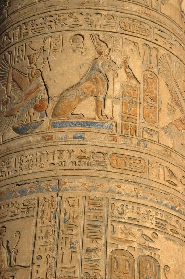 egipscy hieroglyphics obrazy royalty free
