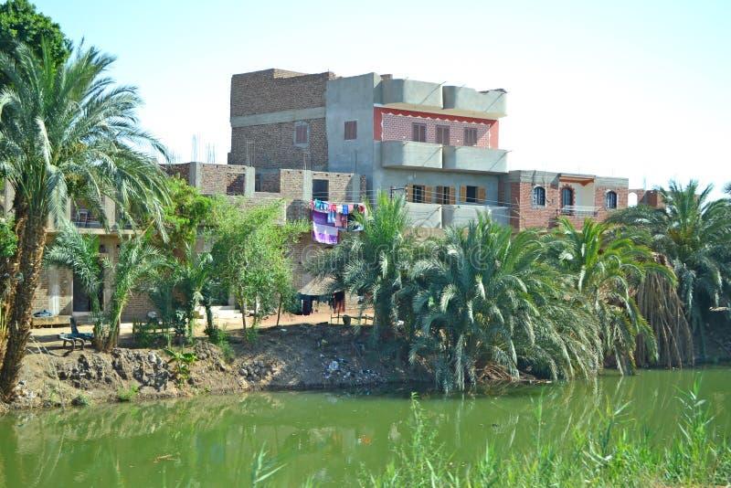 Egipska wieś w Nile dolinie Irygacyjni kanały zdjęcia royalty free