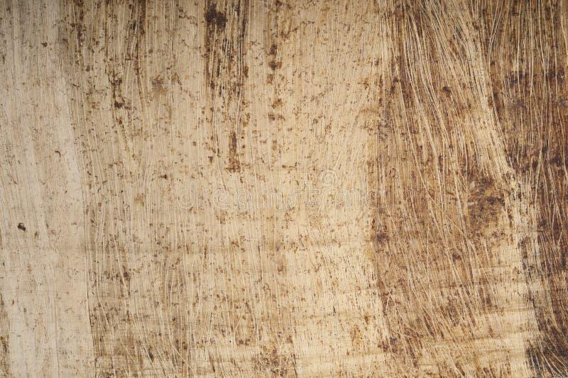 Egipski papirus z przestrzenią dla textured tła fotografia royalty free